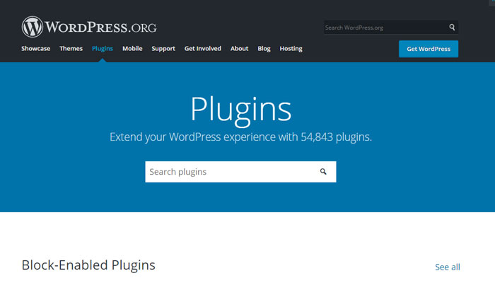 wordpress vs squarespace plugins